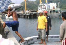 KUPP Labuan Uki Dinilai Rugikan Buruh Pelabuhan