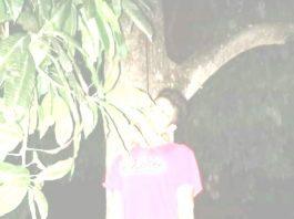 Pria Ini Ditemukan Tergantung di Pohon Mangga Usai Acara Muda Mudi