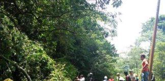 Akses Jalan Trans Penghubung Bolmong Bolsel Tertutup Pohon Roboh