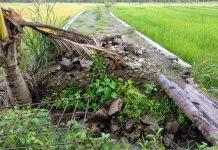 Diduga Asal Jadi, Gorong-gorong yang Dibangun dengan Dandes 2017 Sudah Rusak