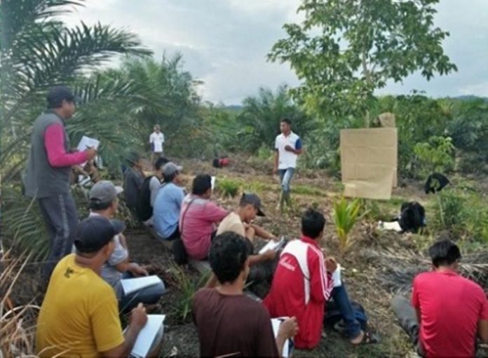 Petani di Bolmong Bakal Disekolahkan