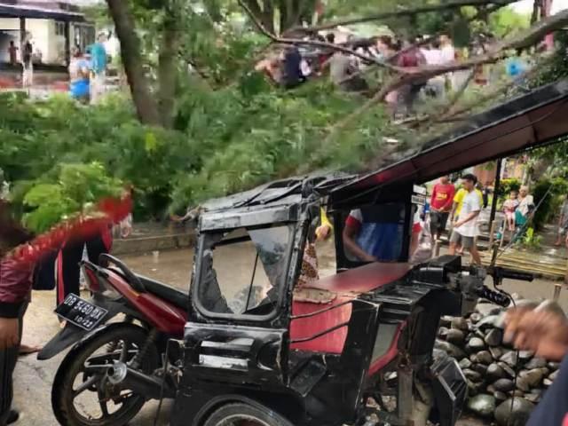 Hujan Deras, Tukang Bentor di Bolmong Tertimpa Pohon