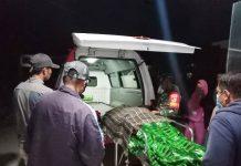 Warga Buol Diterkam Buaya di Perairan Kabupaten Donggala