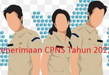 Pemkot Kotamobagu Usulkan 80 Formasi CPNS 2021, Berikut Rinciannya
