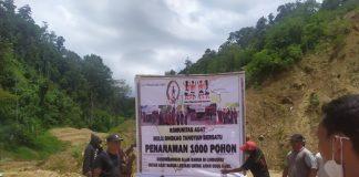 AMAN Tanoyan Bersatu Canangkan Penanaman 1.000 Pohon di Pegunungan Potolo